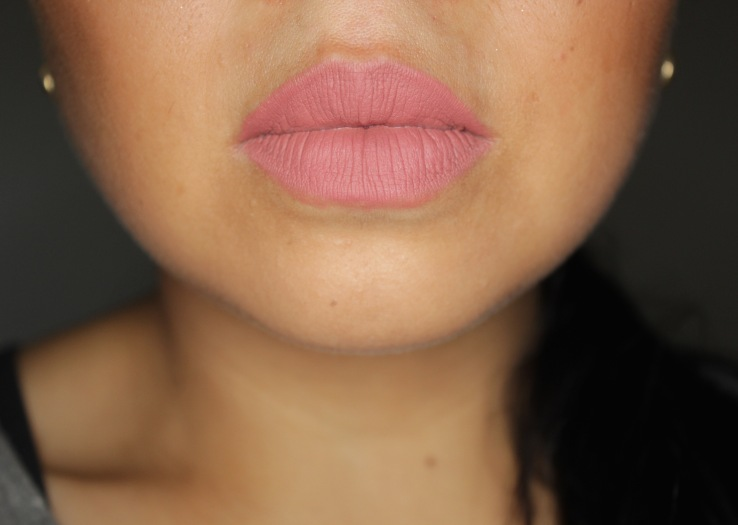 mac_cosmetics_twig_soar_matte_lipstick
